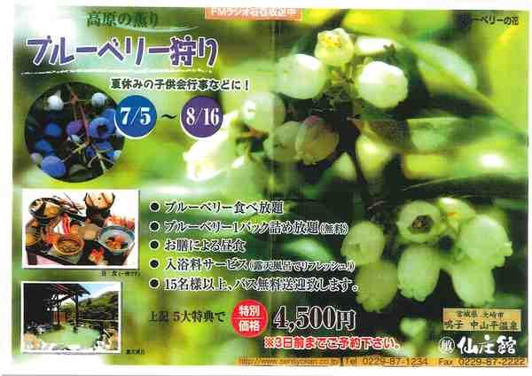 260705-0816-sensyokan-blueberry.jpg