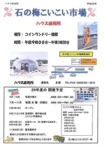 20170513-isinoume-koikoi-itiba.jpg