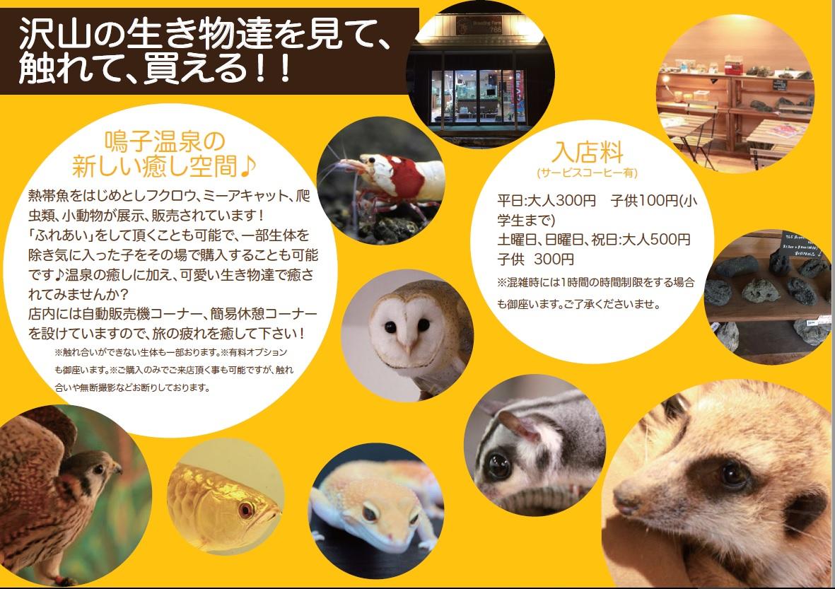 http://www.naruko.gr.jp/news/uploads/Breeding-Farm-765-%EF%BC%91.jpg